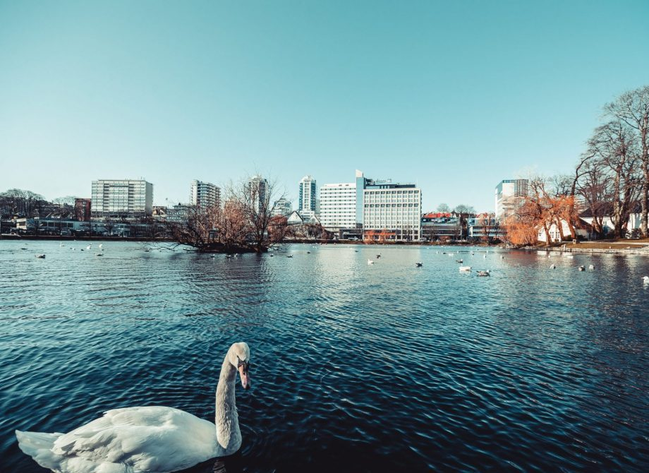 Stavanger. Foto: Vlad Kiselov